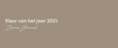 Kleur Van Het Jaar 2021: Brave Ground